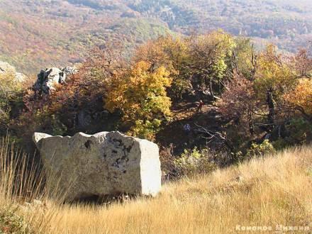 Фото Лицо в камне
