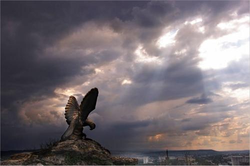 Фото Орёл - символ КМВ